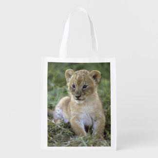 African lion, Panthera leo), Tanzania, Reusable Grocery Bag