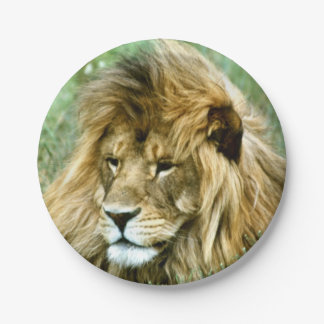 African lion paper plate