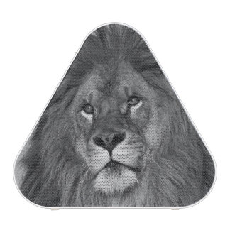 African Lion resting on rock cliff Bluetooth Speaker