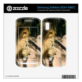 African Lion Skin For Samsung Solstice