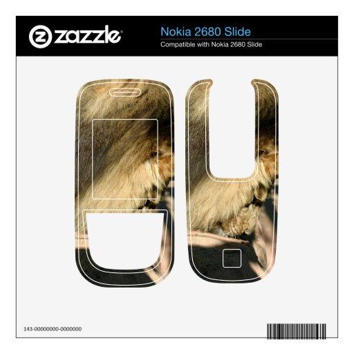 African Lion Skin For Nokia 2680 Slide