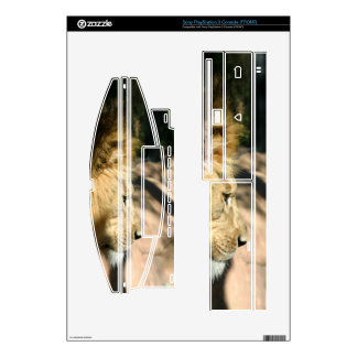 African Lion Skin For The PS3