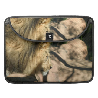 African Lion Sleeves For MacBook Pro