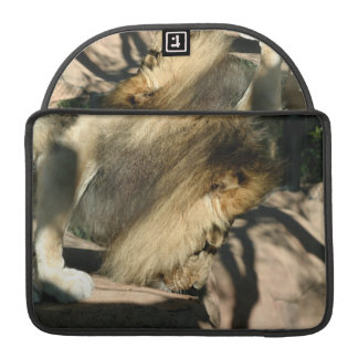 African Lion Sleeves For MacBooks