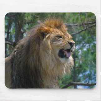 African Lion Snarling Mousepad