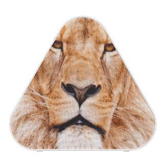 African Lion Wildlife Animal Closeup Portrait Speaker