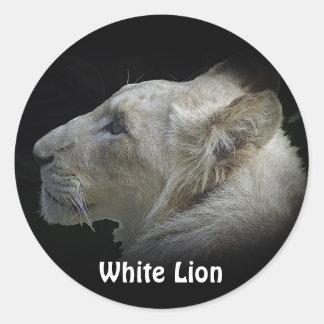 AFRICAN LIONESS Big Five Big Cat Wildlife Stickers