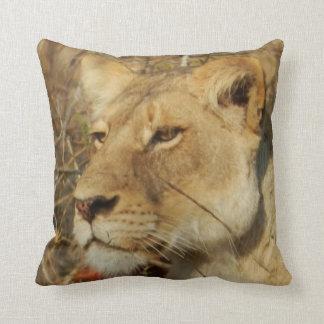 African Lioness Pillow