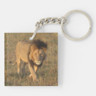 African Lions Keychain