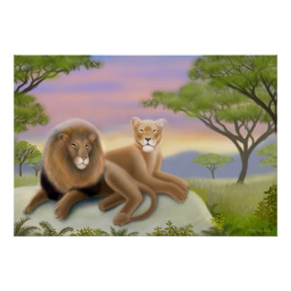 African Lions Poster