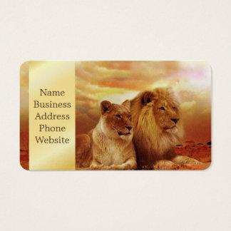 African lions - safari - wildlife business card