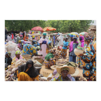 African Market in West Africa Print