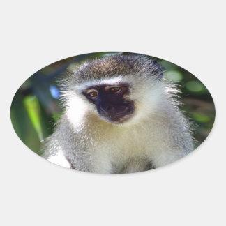 African Monkey Sticker