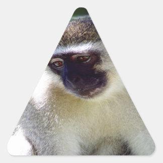 African Monkey Triangle Sticker