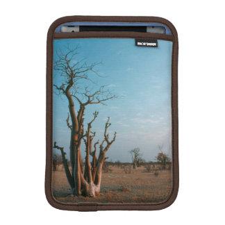 African Moringo Tree On Plain Etosha National iPad Mini Sleeves