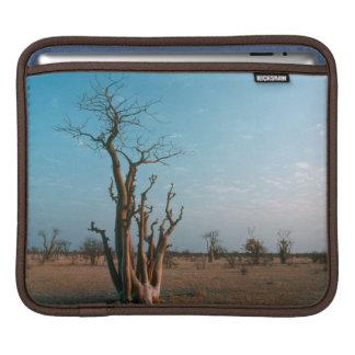 African Moringo Tree On Plain, Etosha National iPad Sleeve