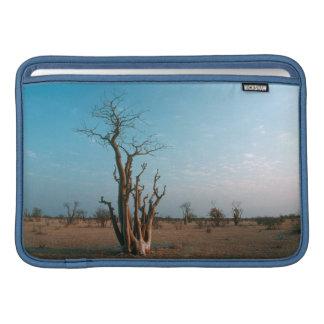 African Moringo Tree On Plain Etosha National MacBook Sleeve