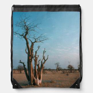 African Moringo Tree On Plain, Etosha National Backpack
