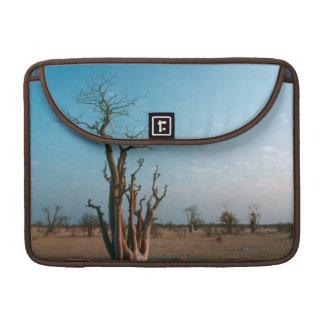 African Moringo Tree On Plain, Etosha National Sleeves For MacBook Pro
