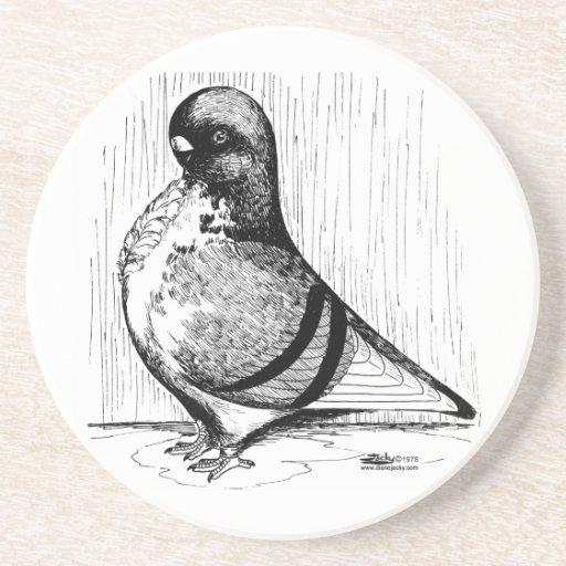 African Owl Pigeon 1978 Coaster