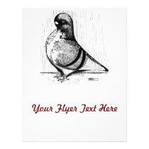 African Owl Pigeon 1978 Flyer