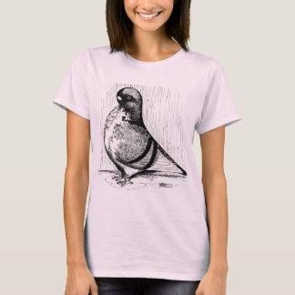 African Owl Pigeon 1978 T-Shirt