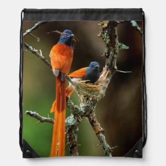 African Paradise Flycatcher 2 Drawstring Bag