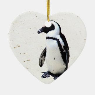African Penguin at Boulders Beach, Cape Town Ceramic Ornament