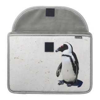 African Penguin at Boulders Beach, Cape Town MacBook Pro Sleeves