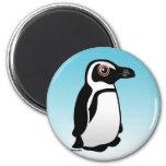 African Penguin Refrigerator Magnets