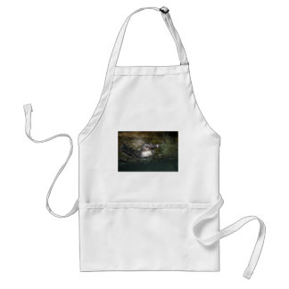 African penguin swimming adult apron