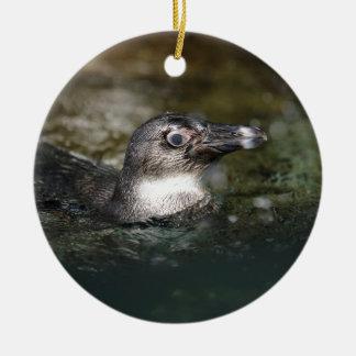 African penguin swimming ceramic ornament