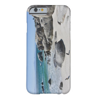 African Penguins, formerly known as Jackass 3 Barely There iPhone 6 Case