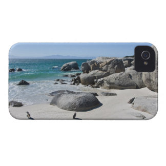 African Penguins, formerly known as Jackass 3 iPhone 4 Case-Mate Cases