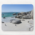 African Penguins, formerly known as Jackass 3 Mouse Pad