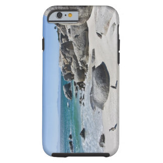 African Penguins, formerly known as Jackass 3 Tough iPhone 6 Case