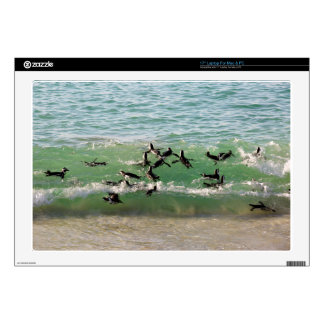 African penguins swimming at beach skin for laptop