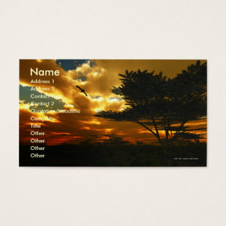 African Planes Business Card Template