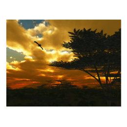 African Planes Postcard