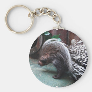African Porcupine Keychain