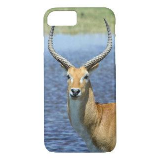African Puku Antelope iPhone 7 Case