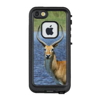 African Puku Antelope LifeProof FRĒ iPhone SE/5/5s Case