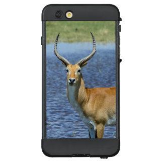 African Puku Antelope LifeProof NÜÜD iPhone 6 Plus Case