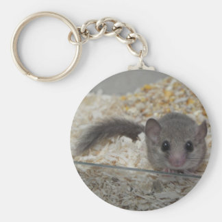 African Pygmy Dormouse Keyring Key Chains