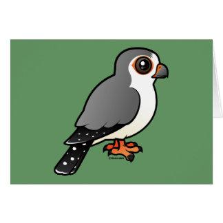 African Pygmy Falcon Card
