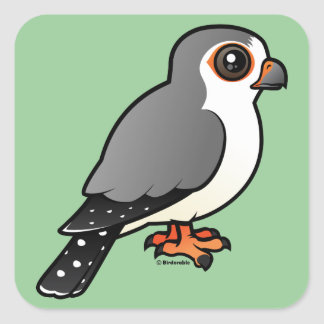 African Pygmy Falcon Square Sticker