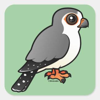 African Pygmy Falcon Square Sticker