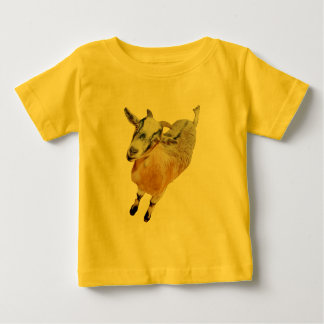 African Pygmy Goat Baby T-Shirt