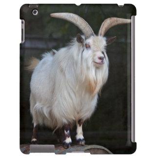 African Pygmy Goat iPad Case