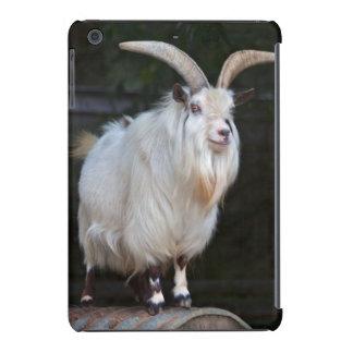 African Pygmy Goat iPad Mini Case